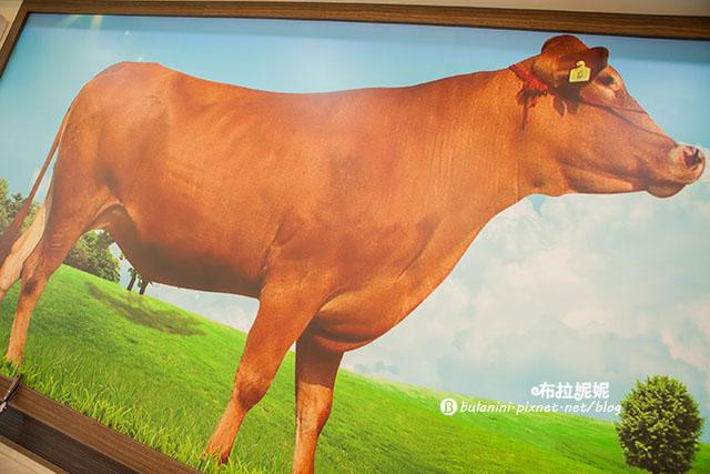 【南投埔里美食】埔里好吃火鍋推薦! 新鮮現切牛~ 每次路過都客滿@台南溫體牛