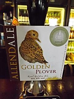 Allendale, Golden Plover, England