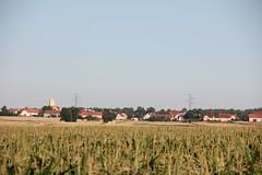 Stary Jaworów village
