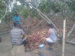Técnicos de Plan Finca ingresan a Chibunga y Puerto el Mate
