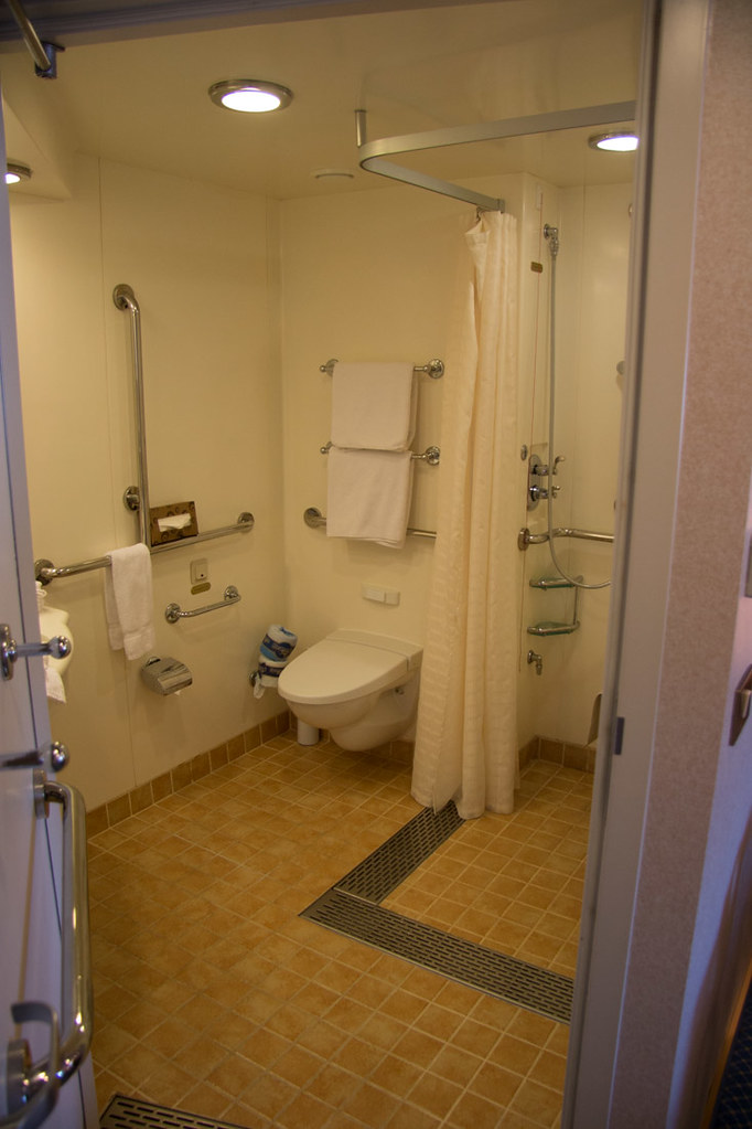 Accessible bathroom in Ruby Princess Cabin