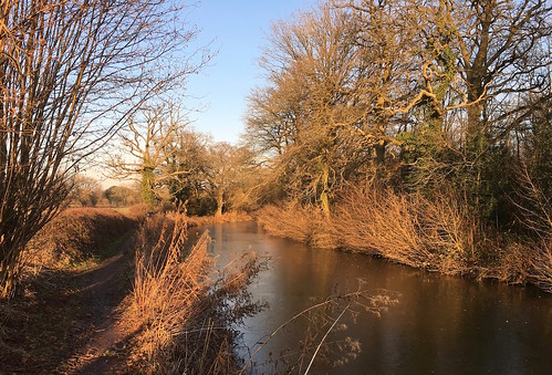 The canal, late afternoon, January