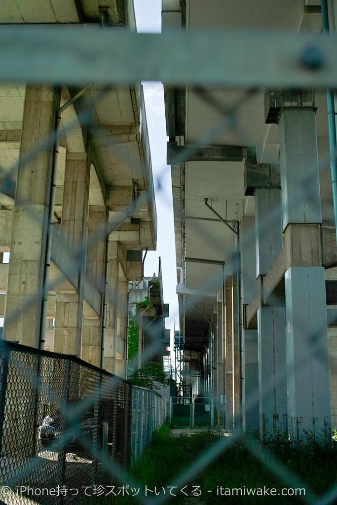 新幹線と平行する南方貨物線