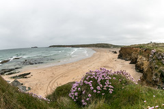 Beach at Gwithian Cornwall
