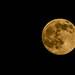 2015-06-30-moon-full-close-1
