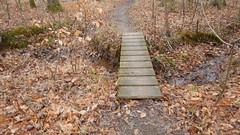DSCN0968 188 Wooden-foot bridge over drainage