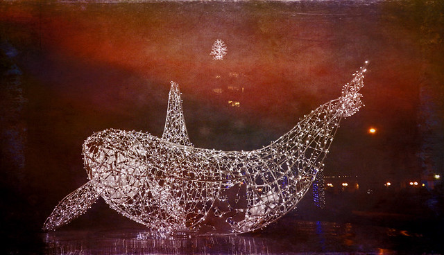 Christmas light decorated Killer Whale in English Bay run through the photo app Stackables
