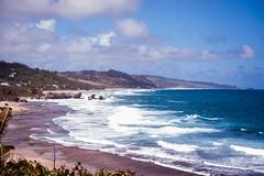 Barbados-2014-02-04-8712