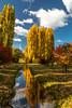 Redlands Estate Tasmania Australia by Abel Photography Tasmania