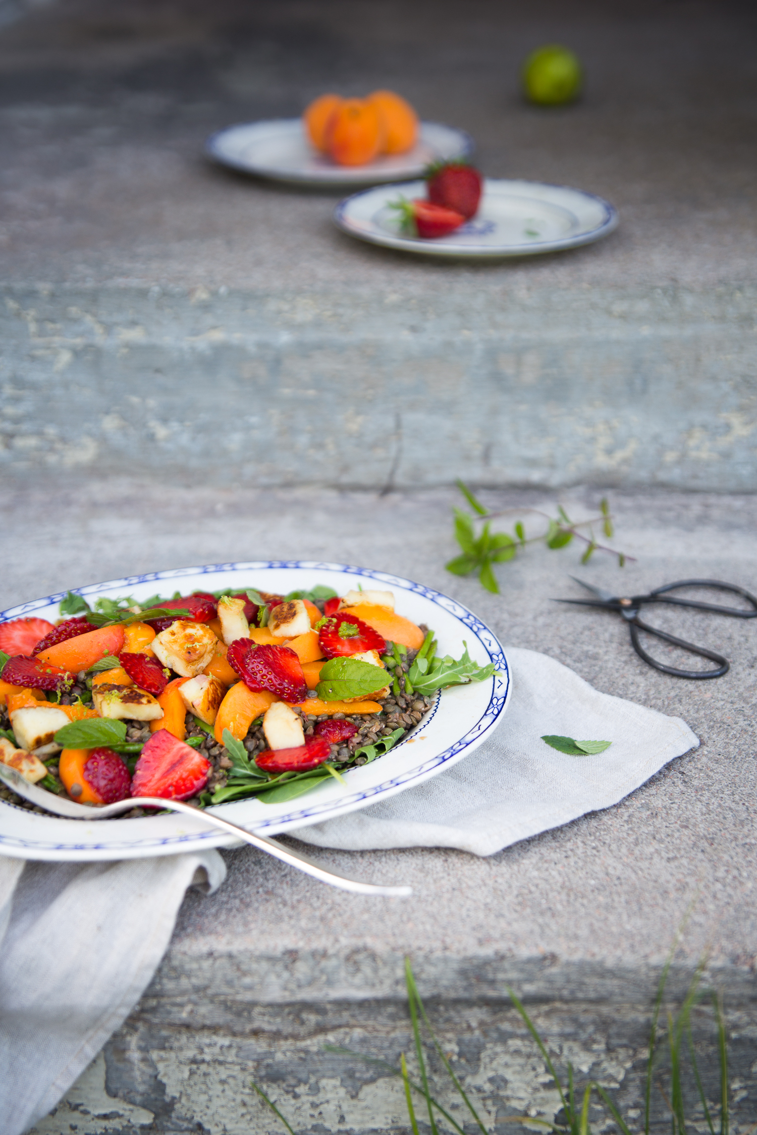 Summer Lentil Salad w Apricots, Strawberries & Halloumi | Cashew Kitchen