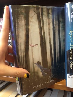 Library: Stray