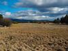 Sunriver, Oregon by Daniel Eynis