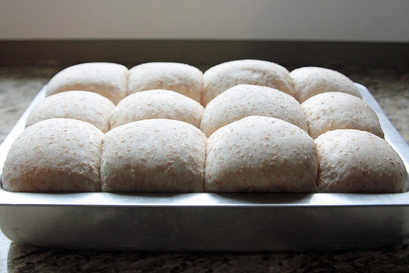 Alberta Whole Wheat Buns