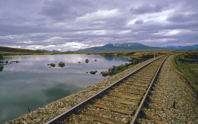 Rails Across the Moor