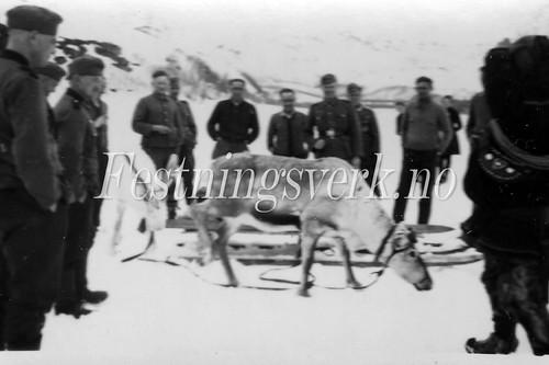 Finnmark 1940-1945 (414)