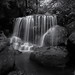 The Allure Of Weeping Rock by Peter Hill1