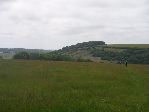 approaching Levin Down