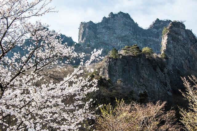 20150418-妙義山-0537.jpg