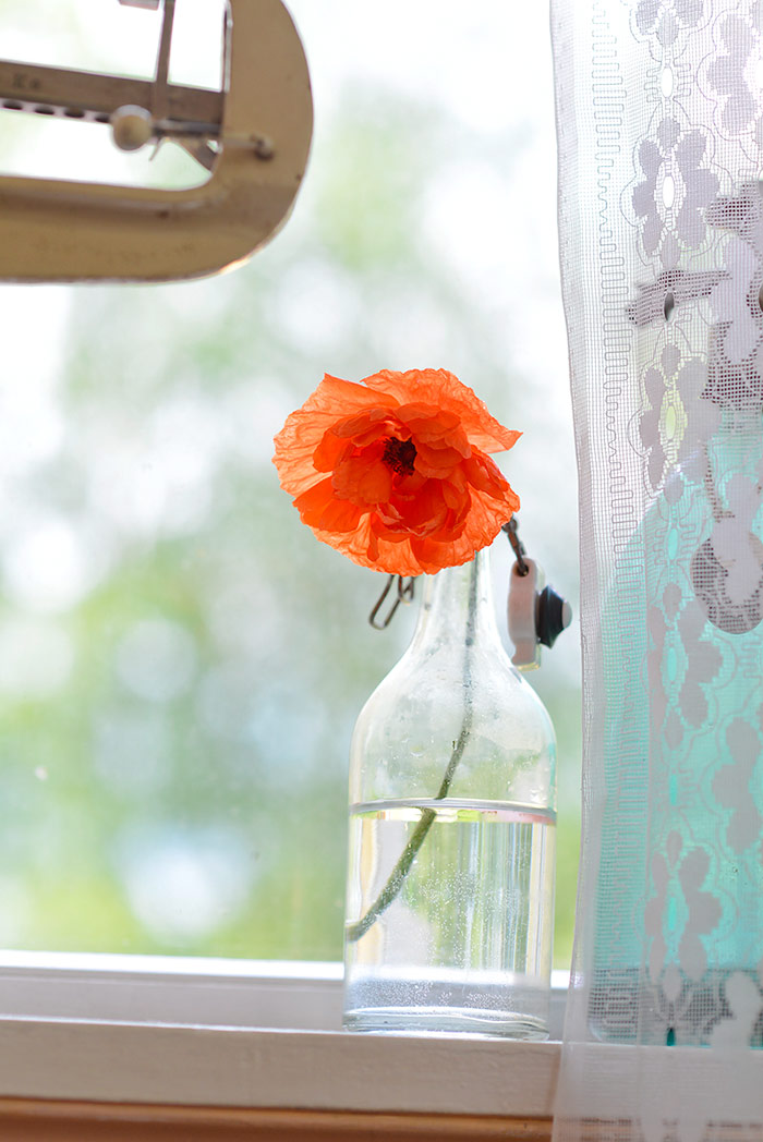 Red poppies on the porch window sill