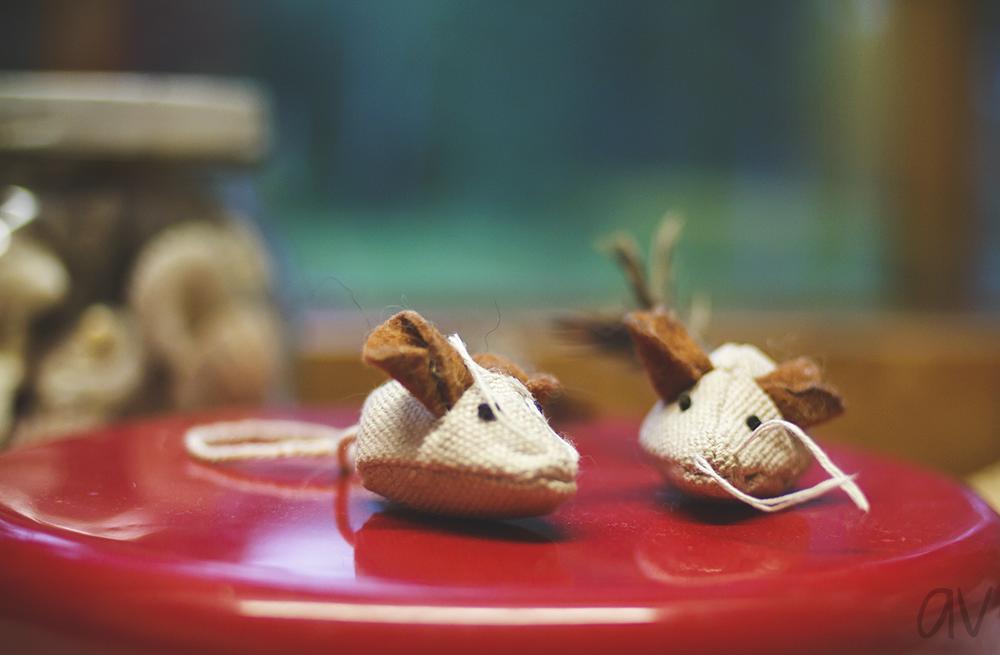 hiirulaiset