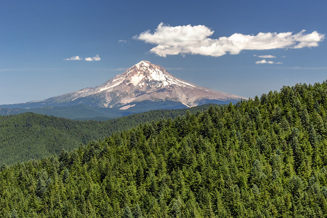 Mount Hood from Old Baldy