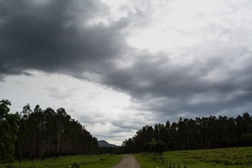 Keybarbin State Forest