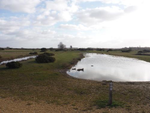 Greenham Common Waymarkers
