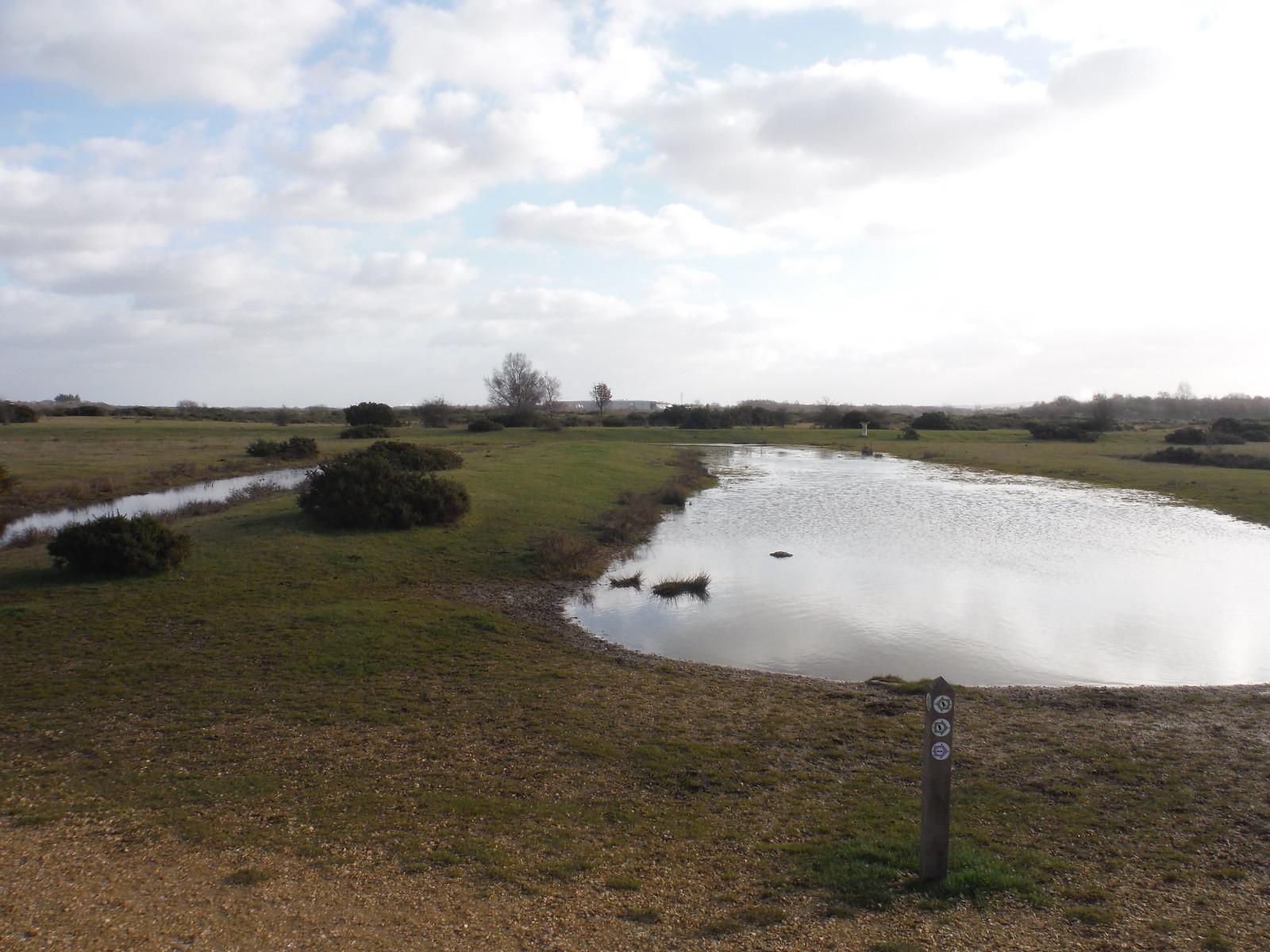 Greenham Common Waymarkers SWC Walk 34 Newbury Racecourse to Woolhampton (Midgham Station)