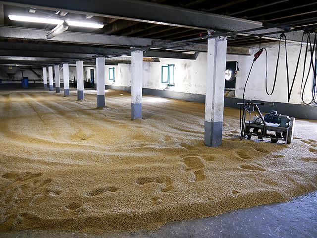 photo - malting floor, Laphroaig Distillery