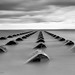 The Groynes by Brian-Leach