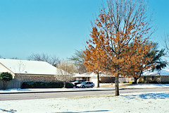 North Richland Hills Neighborhood after Snowstorm, March 2008