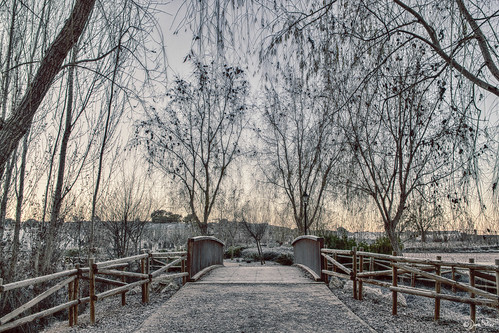 Invierno en la Jara. HDR