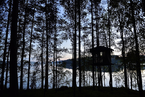 365 fin degrees finlande iitti degres