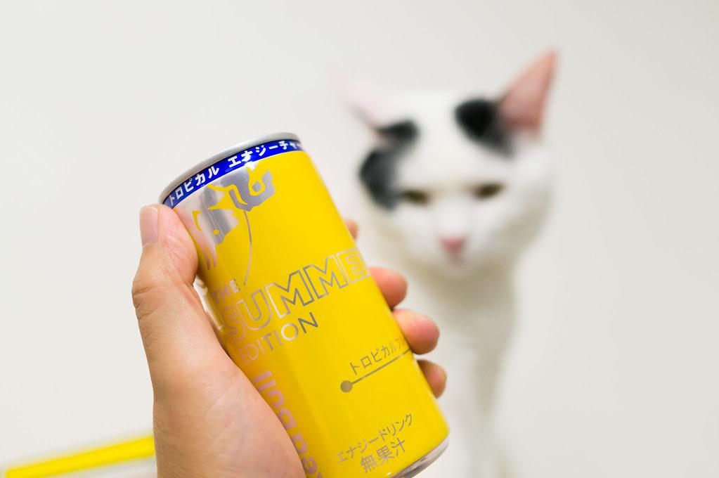 レッドブル サマーエディション 185ml缶の外見