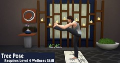Yoga 8 Tree Pose