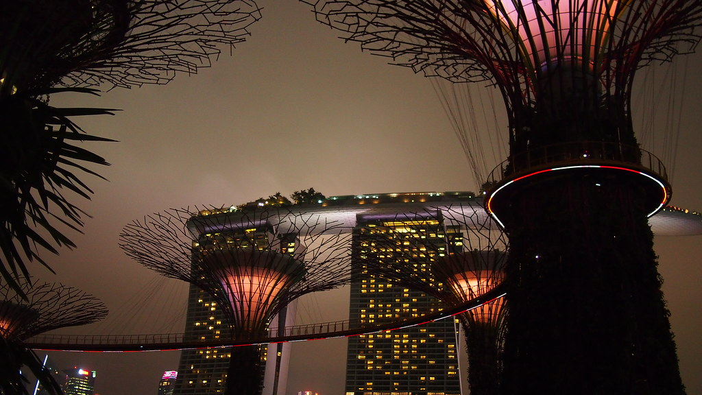 Why you should visit Gardens by the Bay during the SG50 weekend - Alvinology