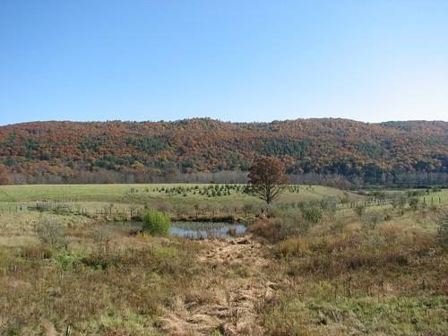 autumn mountain geotagged virginia pond geo:lat=3825269 geo:lon=7957275