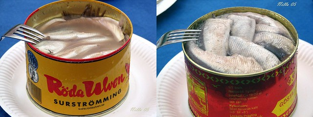 Surströmming/Fermented herring