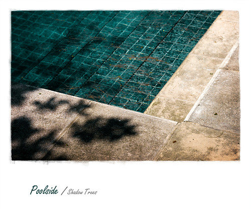 Poolside / Shadow Trees