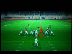 Madden Video Game