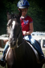 Horse riding classes, Concentration