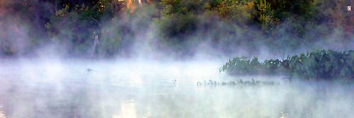 2005 mist whiterock lake dallas texas whatknot