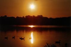 Wawanosh Sunset 2