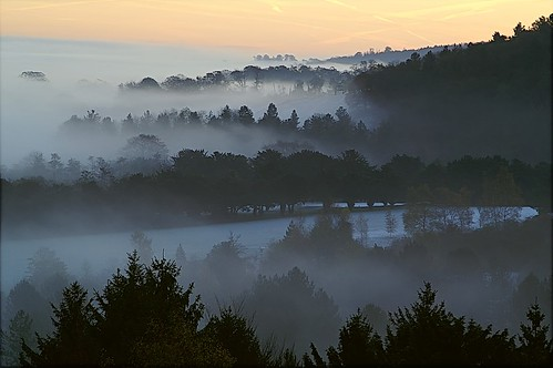 Sunday morning mists