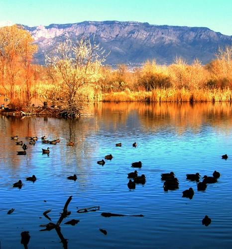 New Mexico Winter Activities