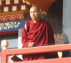 priest, monk, lama, person,
