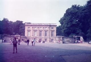 19830065
