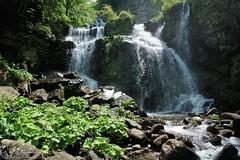 Monte Spigolino e cascate del Dardagna (Parco regionale del Corno alle Scale)