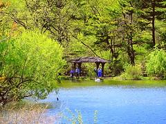 Lake at Spring