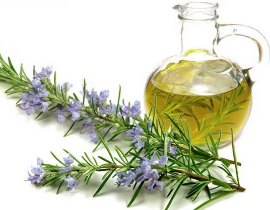 Rosemary Oil For Natural Hair Home Remedies